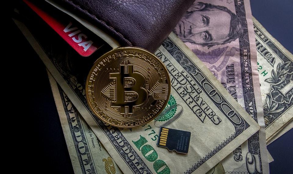 Dolares, tarjeta de crédito, bitcoin como medio de pago de impuestos para emprendedores